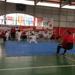 Resumen Jornada Shotokan