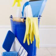Bolsa de Empleo Limpiadoras, Proceso
