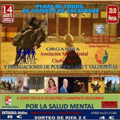 Espectáculo Ecuestre Flamenco Solidario